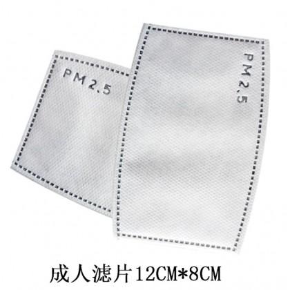Kid Children & Adult Mask 2pcs PM2.5 Filter Only